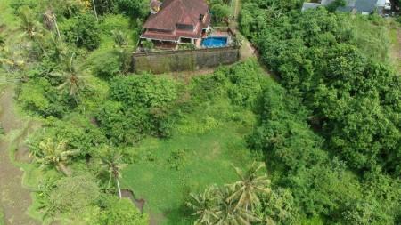 440 sq m of Freehold Land for Sale 20 Minutes from Ubud Center (Jl. Raya Ubud)