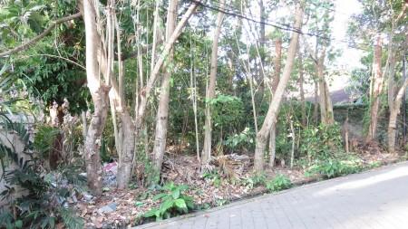 For Sale Freehold Land In Jalan Batu Belig Close To Seminyak And Canggu