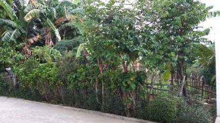 Tanah Kavling Murah di Pondok Aren Komplek Arinda Permai luas tanah 290 m