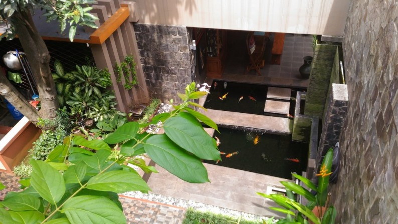 Dijual Cepat Rumah Idaman Nan Asri Dengan Kolam Ikan Koi Yg