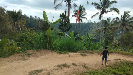 23000 Sqm Freehold Land By The 2 Rivers In Payangan, Near Ubud