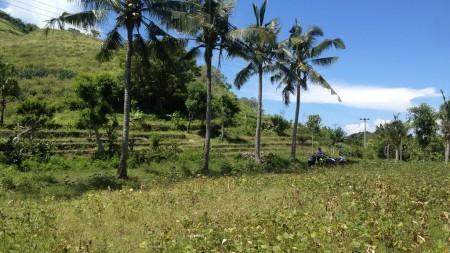 Super Offer 40470 Sqm Freehold Land In Nusa Penida