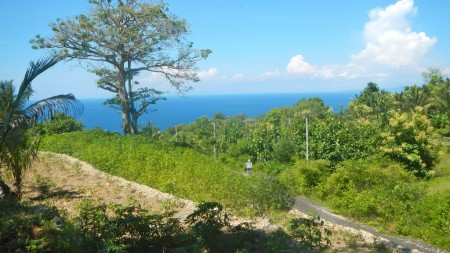 Commercial Freehold Land Suitable For Resort Or Villa Complex - 25800 Sqm In Nusa Penida