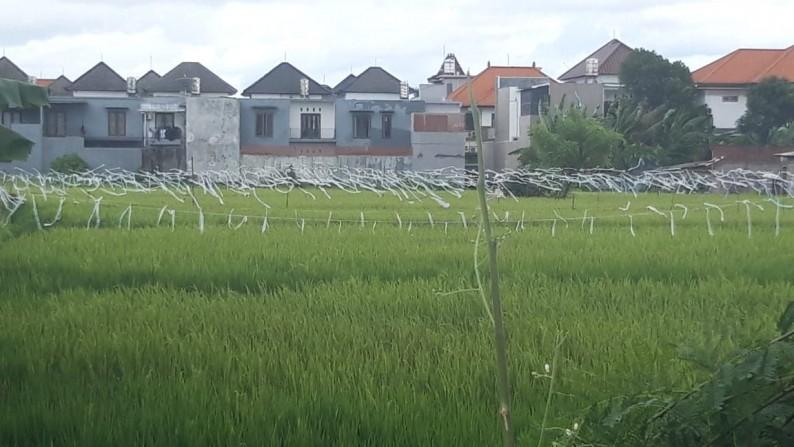 Land Leasehold 4500 Sqm in main Road Denpasar Bali