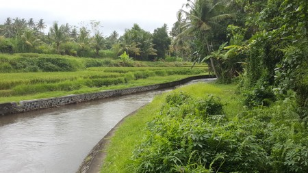 3000 sq m Leasehold Land with River and Rice Field View for Sale just 10 Minute from Central Ubud