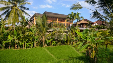 Amazing 4 Bedroom Villa on 561 sq m of Leasehold Land 7 Minute from Ubud Center