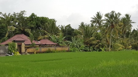 Leasehold Villa for Sale on 600 sq m of Land Located 5 Minutes from Ubud Center