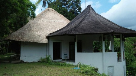 3 Bedroom Leasehold Villa with Amazing Views of the Forest for Sale Located Just 10 Minutes from Ubud Center