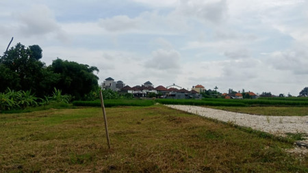 Freehold land with ricefield Beyond Canggu